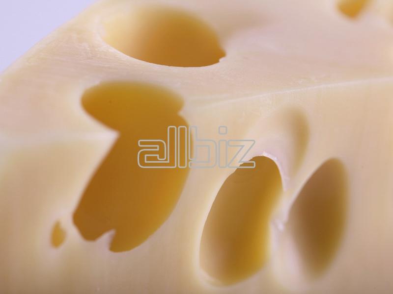Vásárolni Cheddar sajt
