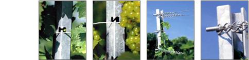 Vásárolni ARTOS szőlőoszlop-rendszer
