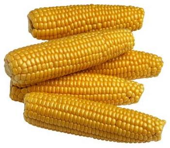 Vásárolni Corn