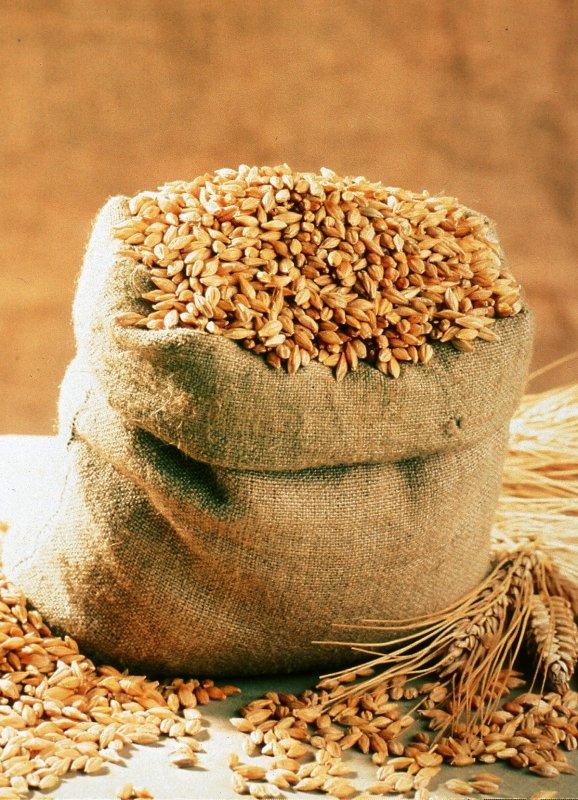 Vásárolni Пшеничный солод.