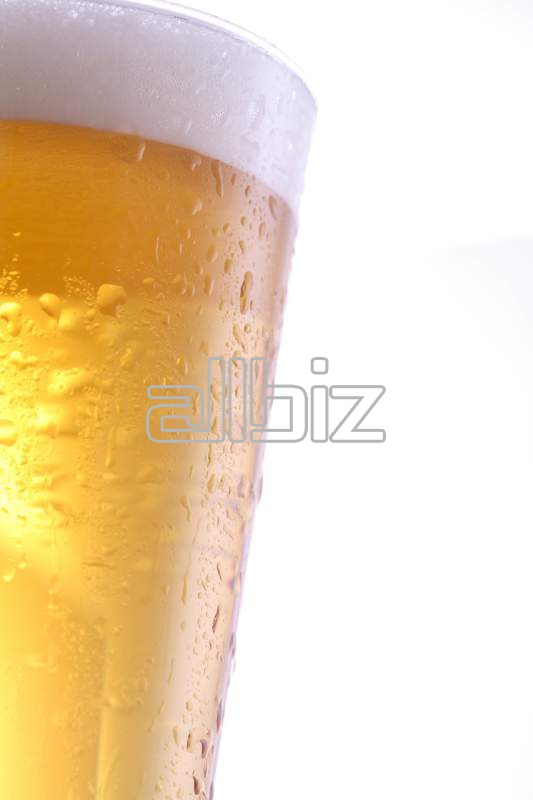 Vásárolni Világos sör