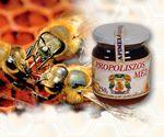 Vásárolni Propoliszos-méz