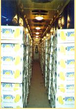 Vásárolni Egyszintes banánérlelő