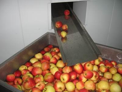 Vásárolni Alma-körte gyümölcslé