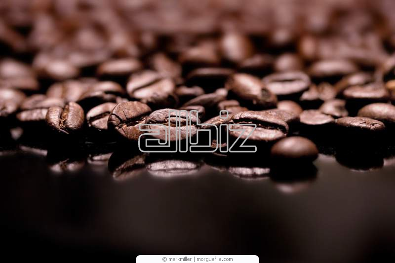 Vásárolni 100/% Arabica kávé