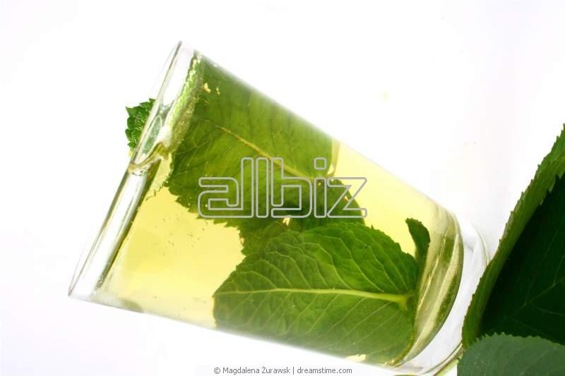Vásárolni Borsmenta tea