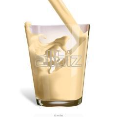 Ízesitett tejek