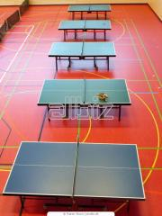 Beltéri pingpong asztal