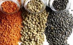 New Crop Lentil Beans