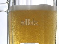 Alkoholmentes Borsodi Póló