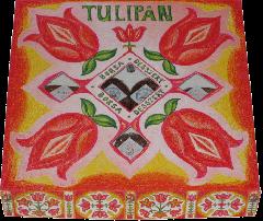 """""""Tulipán"""" négyféle ízű"""