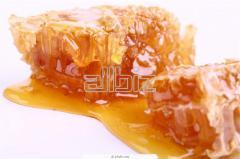 Natúr méz torokbalzsam