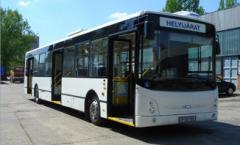ARC 134.01 alacsony padlós szóló autóbusz