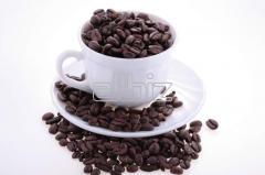 Arabika Kávé