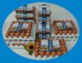 Fertőtlenített héjú,felületkezelt tojás