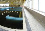 Megrendelés Termál medencek Nyári strandfürdőnk területén szintén három medence található, egy 50 m-es, amely verseny célokra is alkalmas, egy 130 négyzetméteres, vízforgatásos élményelemekkel ellátott gyermekmedence, valamint egy kis gyógyvizes termálmedence 36°C.