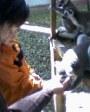 Látogatás az állatkertben